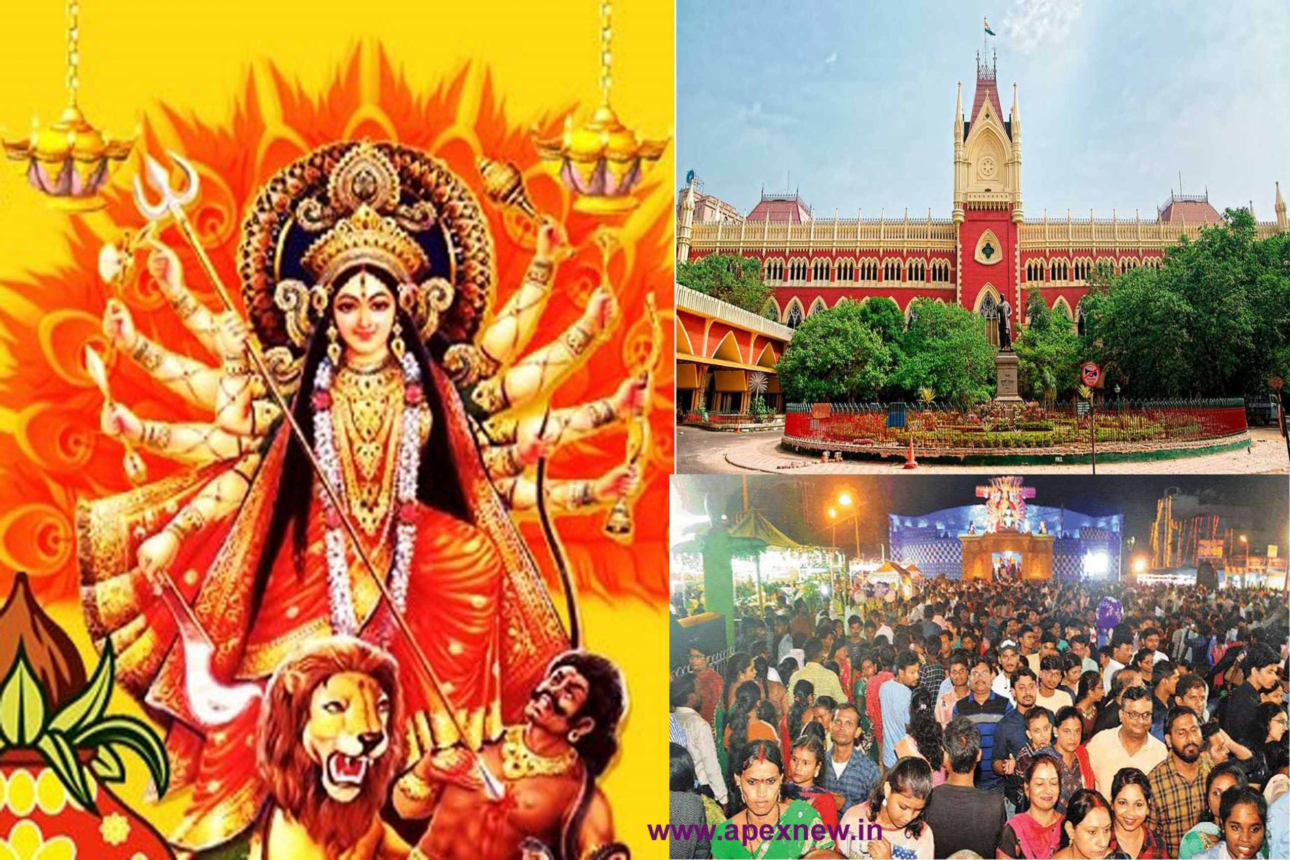 Stop Durga Puja, public interest case in the High Court